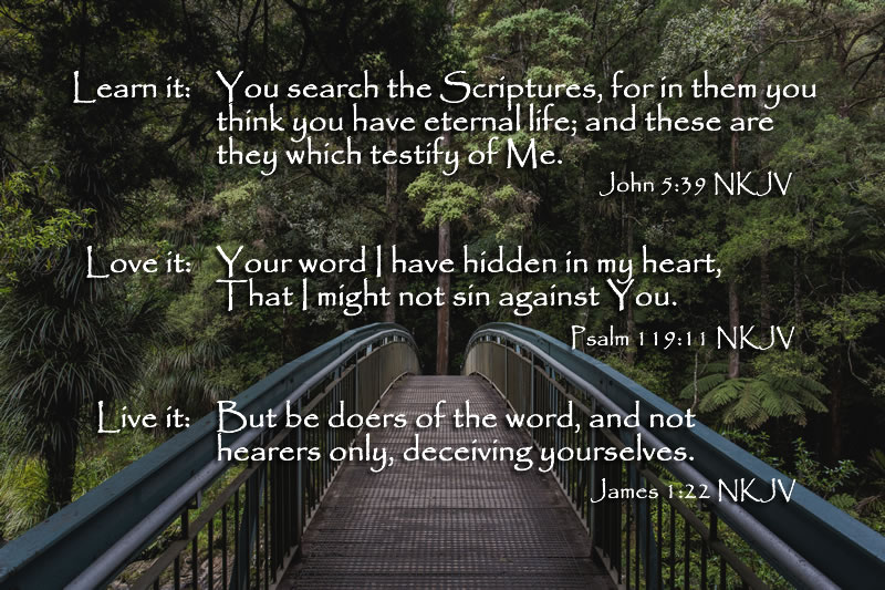 scripture foundation | A Voice in the Distance